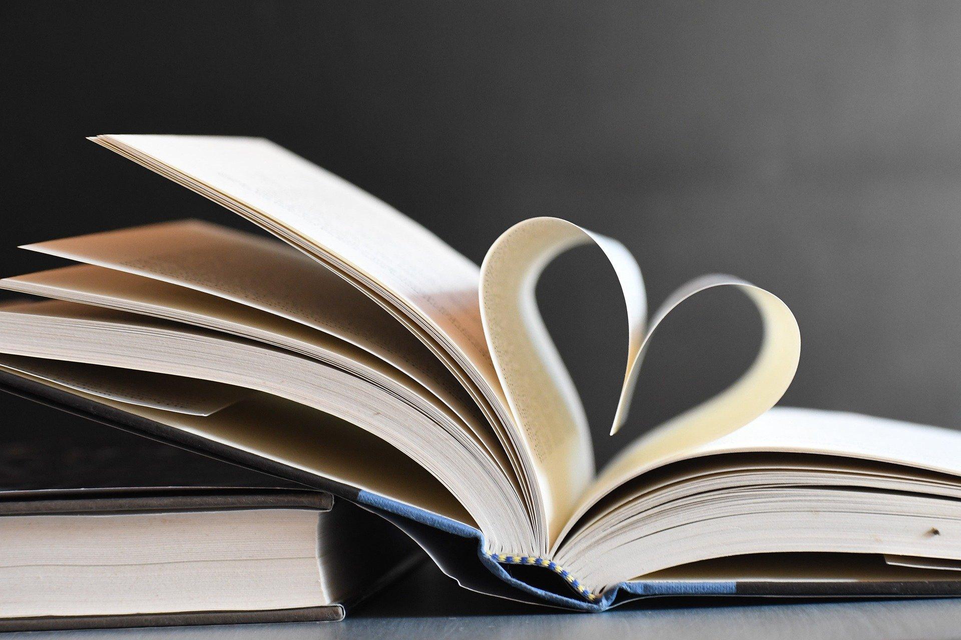 Sachbücher Fachbücher schreiben lassen
